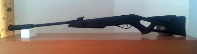 Gamo Whisper X – Air Gun Review – My Random Ramblings