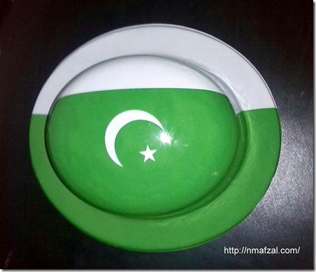 Pakistan Flag (2)