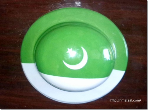 Pakistan Flag (3)